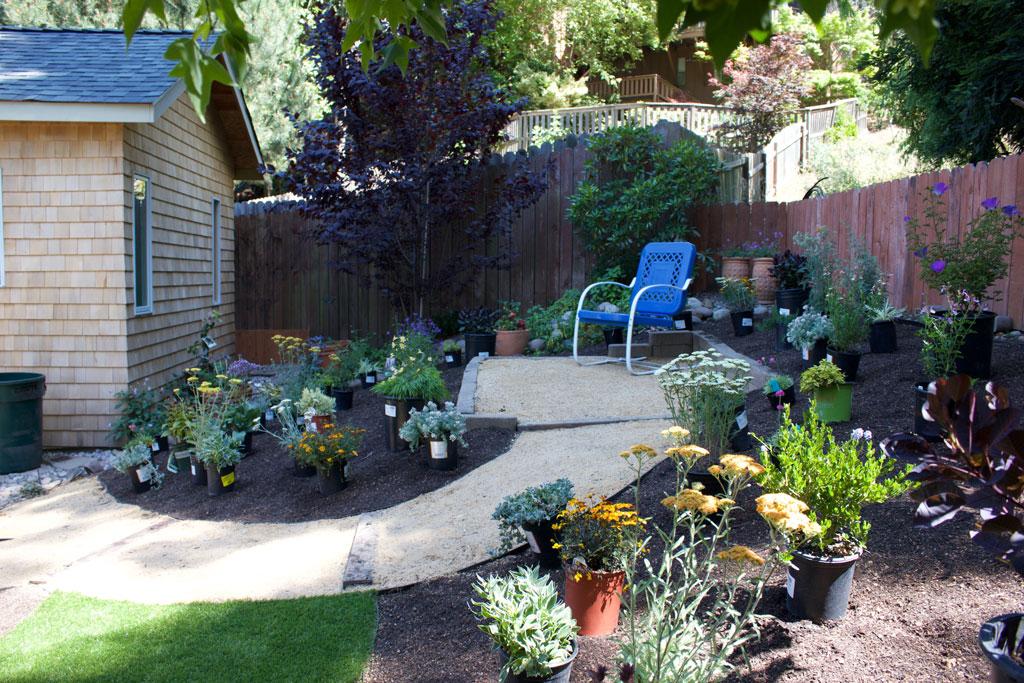 garden-design-bay-area-IMG_8420-1024